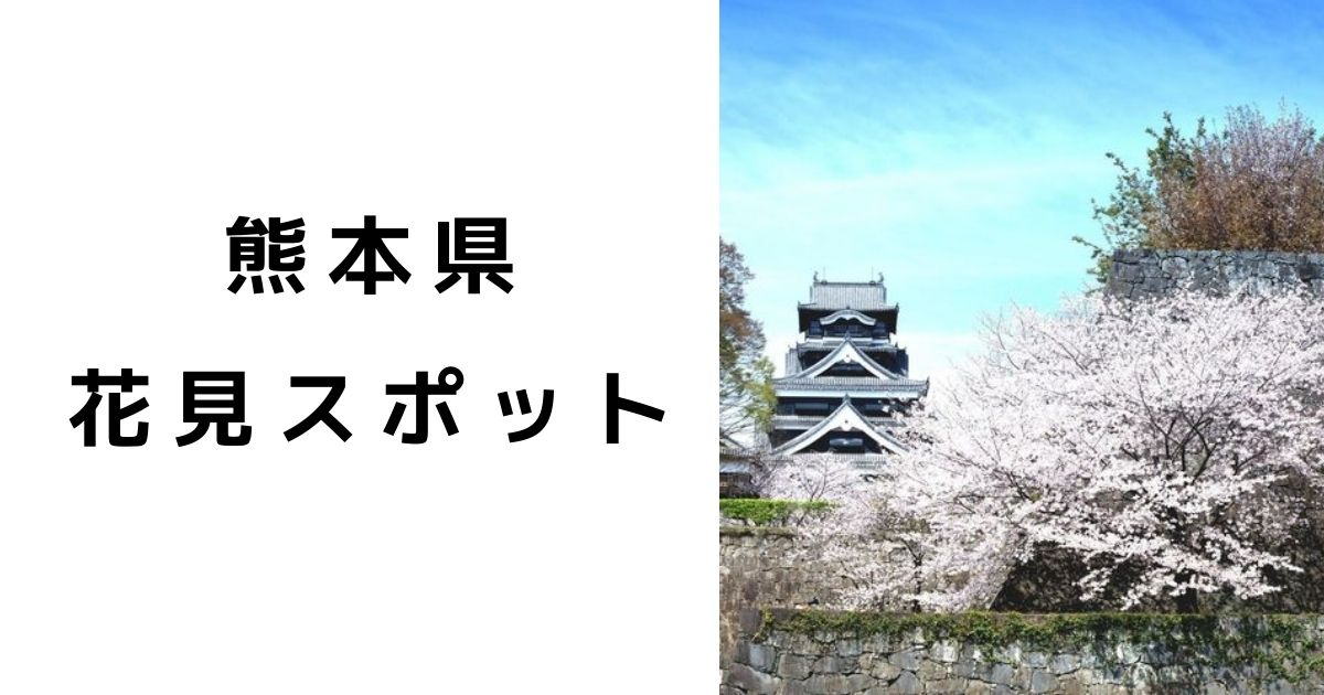 【熊本県】お花見おすすめ穴場スポット|混雑状況と駐車場の完備は?