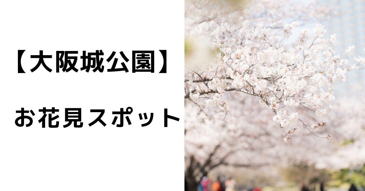 大阪城公園の花見❘混雑状況や穴場スポットは?場所取りの時間はいつがベストなのか!